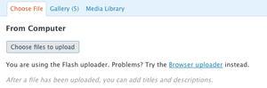 Flash 10 Breaks WordPress File Upload
